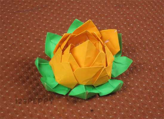 How to Make a Lotus With Paper